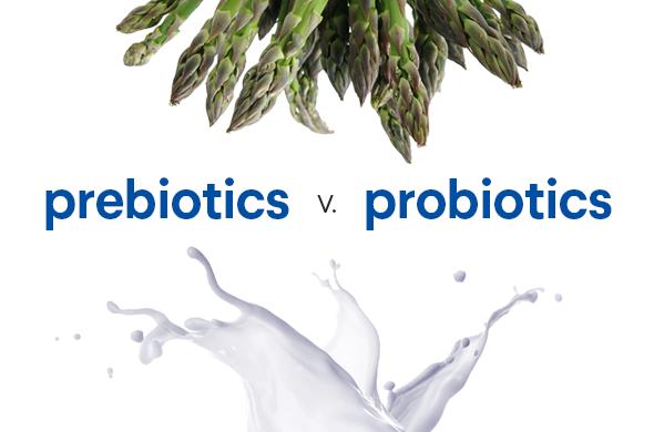 Probiotics Prebiotics và những điều kì diệu