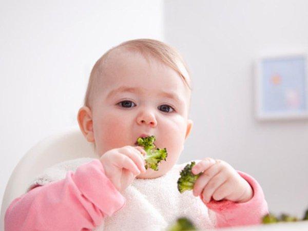 trẻ biếng ăn trong giai đoạn ăn dặm